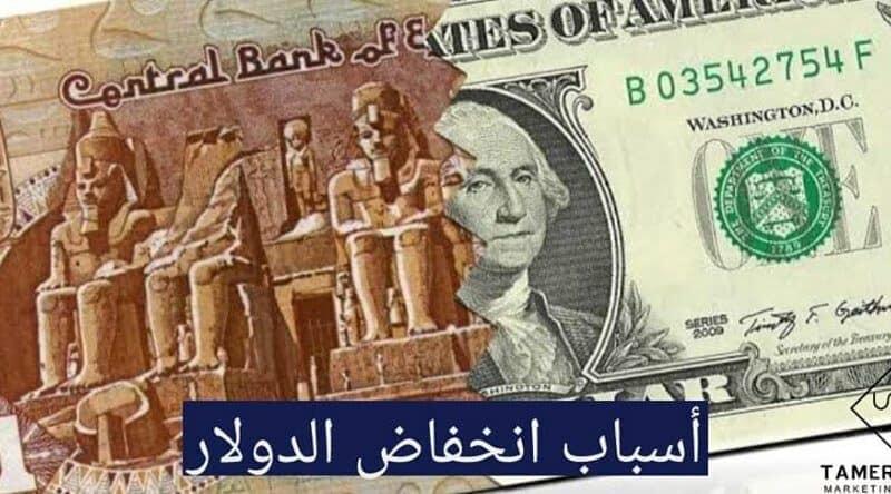 الدولار و الجنيه